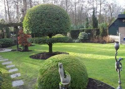 Hagen knippen tuinonderhoud Hoveniersbedrijf Robert Sterk Hilversum -  (5)