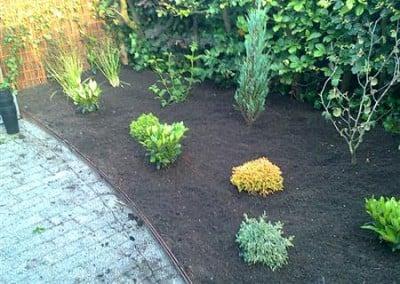 Beplanting - tuinaanleg Hoveniersbedrijf Robert Sterk Hilversum - oa Tuinaanleg Tuinonderhoud Tuinontwerp  (108)