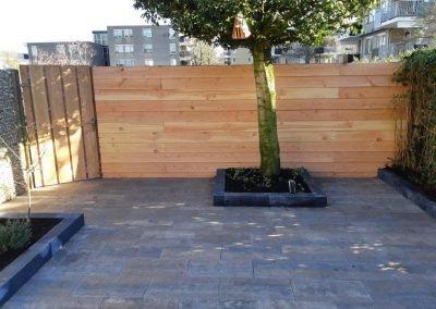 boomplanten (5) tuin aanleg Hilversum