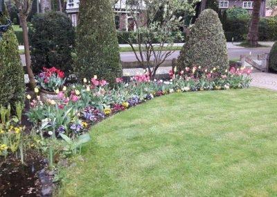 grasmaaien en beplanting (5) tuin aanleg gooi